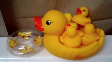 Rubber ducks 362 200