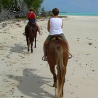 Horseback Riding with Alzheimer's
