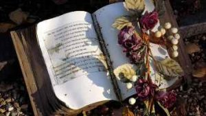 A bible at a grave site