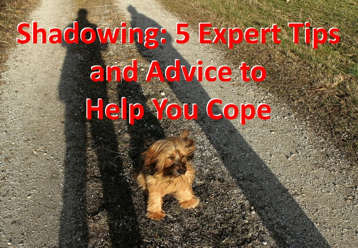 Expert Tips to help you cope with shadowing
